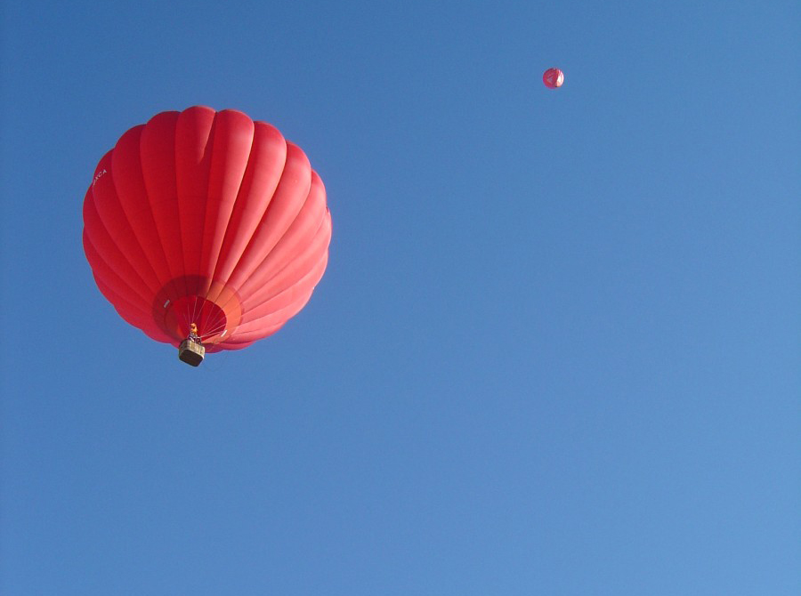 montgolfière nature ciel insecte